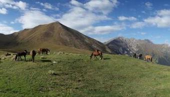 Karakol-Kyrgyzstan (15) (1)